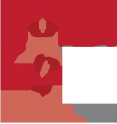 Dalit Freedom Network Schweiz
